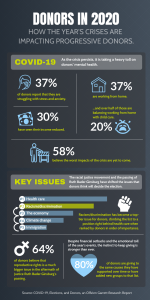 Infographic - Donors in 2020